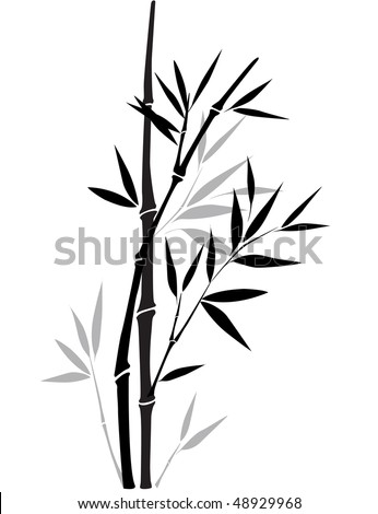 Black and white bamboo