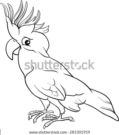 Black and White Cartoon Vector Illustration of Cockatoo Parrot Bird for Coloring Book - stock vector