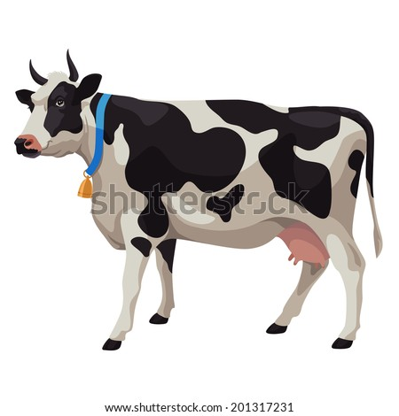 Black Cow Stock Images, Royalty-Free Images & Vectors | Shutterstock