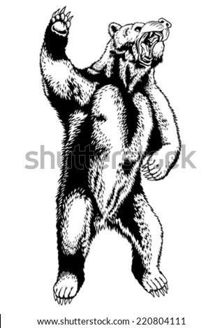 Black and white drawing of a wild bear
