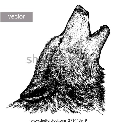 black and white engrave isolated vector wolf head - stock vector