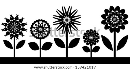 Black and white flowers border