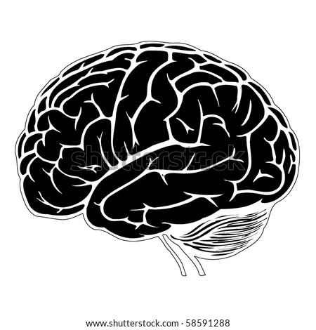 black and white human brain - stock vector