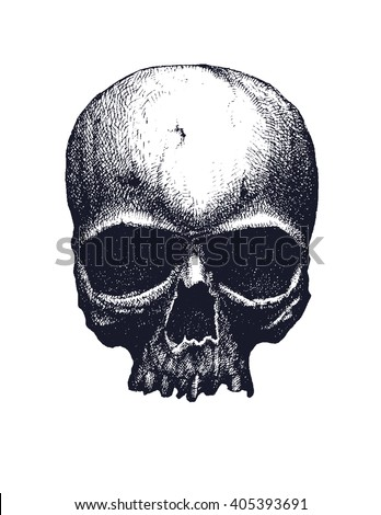 Black and white human skull. Hand drawn vector illustration - stock vector