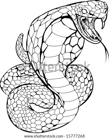 Black and white illustration of a cobra snake preparing to strike - stock vector