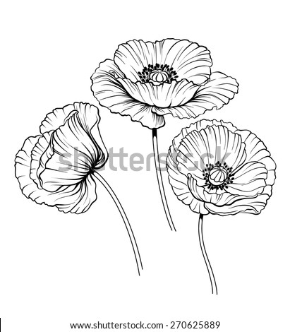 Flower line drawing on how to draw cartoon flowers