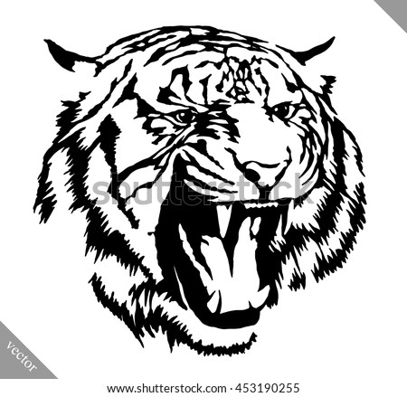 black and white linear paint draw tiger vector illustration