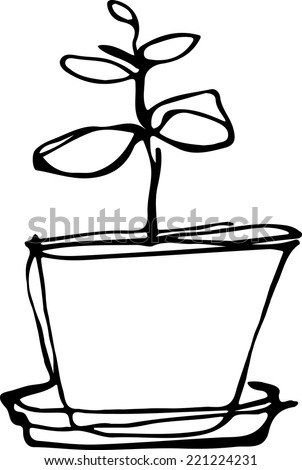 black and white sketch flower room in a flowerpot  - stock vector