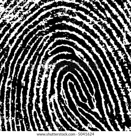 Black and White Vector Fingerprint Crop - Very accurately scanned and traced ( Vector is transparent so it can be overlaid on other images, vectors etc.) - stock vector