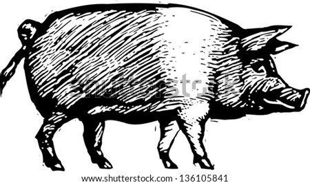 Black and white vector illustration of a pig - stock vector