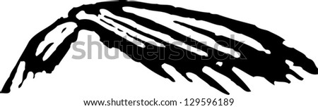 Black and white vector illustration of human hair