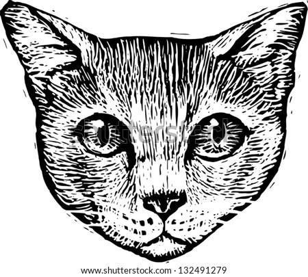 Abyssinian Cat Black White Tattoo Art