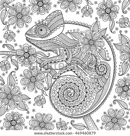 Chameleon Stock Photos Royalty Free Images Amp Vectors