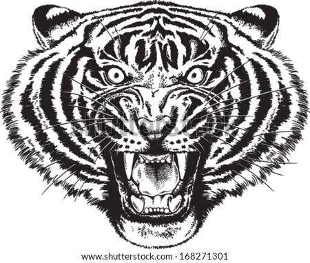 Black and white vector sketch of an angry tiger roaring - stock vector