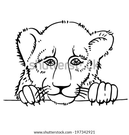 Black and white vector sketch of the lion - stock vector