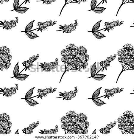 Black and white vintage floral pattern. Hand drawing. Seamless for fabric design, gift wrapping paper and printing and web projects.