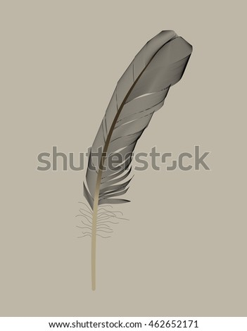 Black Bird Feather Drawn in Vector Illustration. EPS10