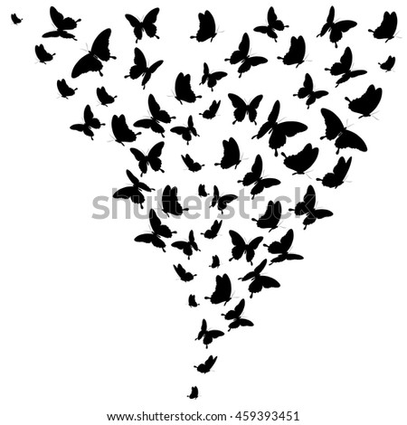 black butterflies,on a white. Vector.