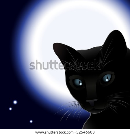 Black cat and moon, vector illustration, all parts closed, EPS8 format, possibility to edit - stock vector