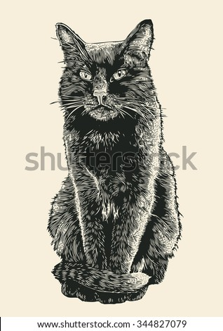 black cat. engraving style. vector illustration.