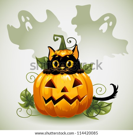 Black cat in a Halloween pumpkin and ghost.  Background is separate. - stock vector