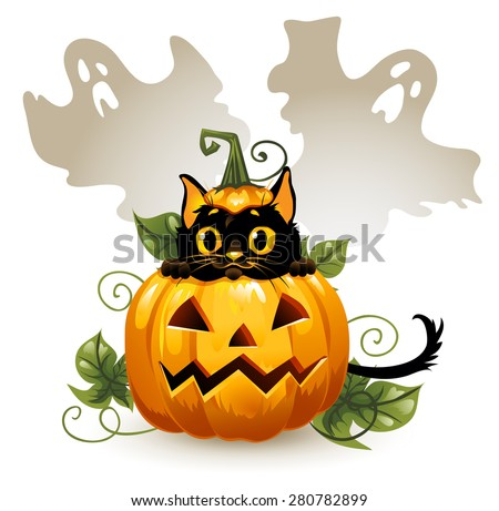 Black cat in a Halloween pumpkin and ghost. Background is separate.
