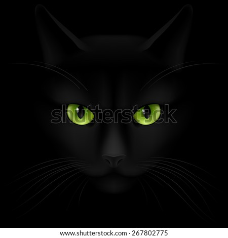 Black cat with green eyes looking out of the darkness - stock vector
