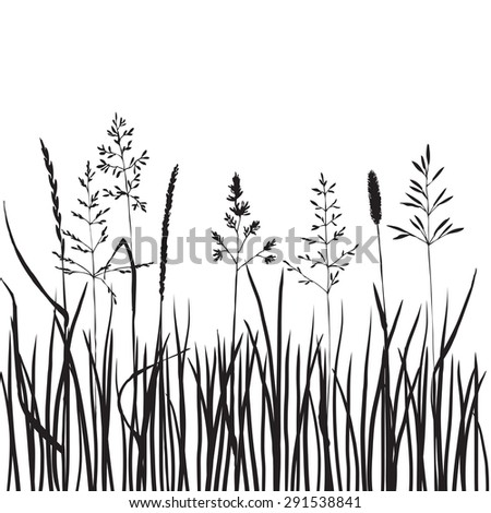 black grass silhouettes, hand drawn wild cereals, meadow wild plants, vector illustration - stock vector