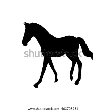 Black horse art illustration silhouette on a white background