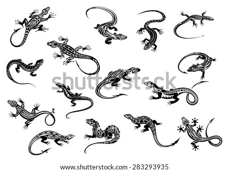 Lizard Tattoo Stock Images Royalty Free Images amp Vectors Shutterstock