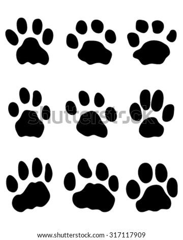 Leopard Paws Stock Ima...