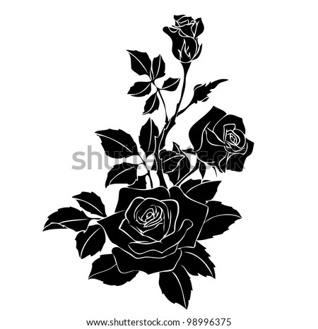 black rose vector on white - stock vector