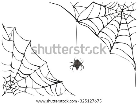 Black scary spider of web. Illustration in vector format - stock vector