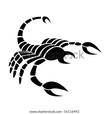 Black scorpio isolated on white - stock vector