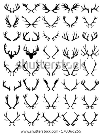 Black silhouettes of different deer horns, vector - stock vector