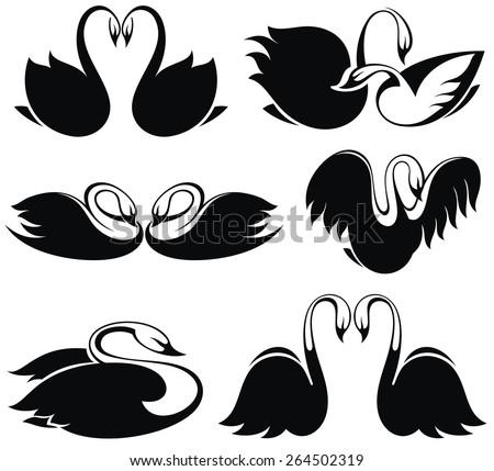 Black swan - stock vector