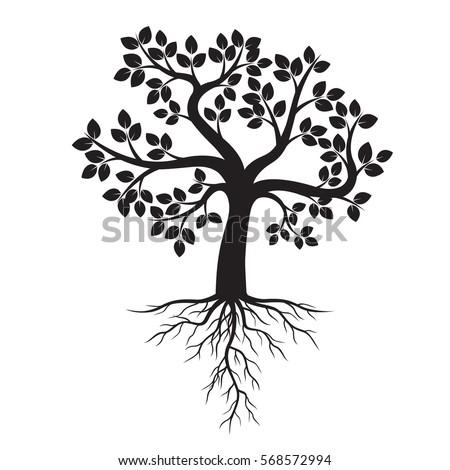 black tree roots vector illustration stock vector royalty free rh shutterstock com tree outline with roots vector tree with roots silhouette vector free