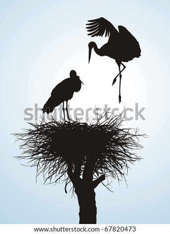 Black vector silhouettes of two storks to nest - stock vector
