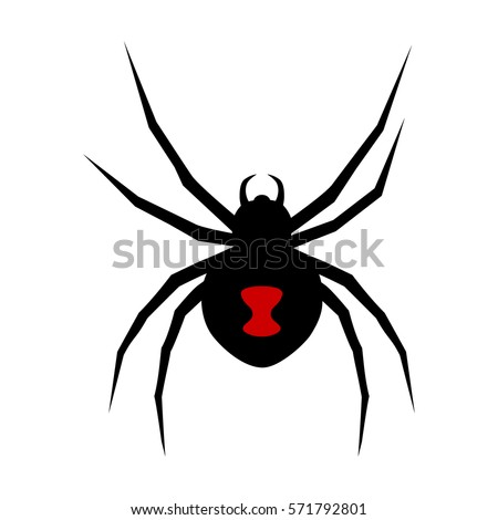 black widow spider stock images, royalty-free images & vectors ... - Black Widow Spider Coloring Pages