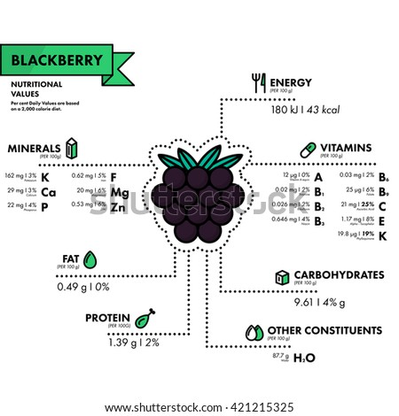 Blackberry - nutritional information. Healthy diet. Simple flat infographics with data on the quantities of vitamins, minerals, energy and more.