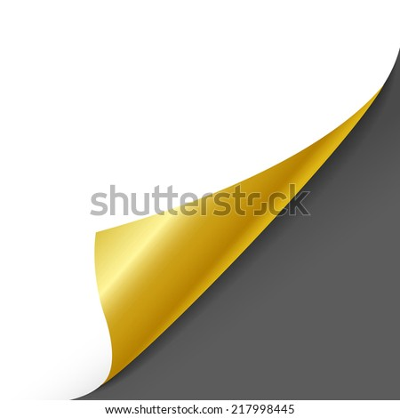 blank sheet of paper with page curl over grey - stock vector