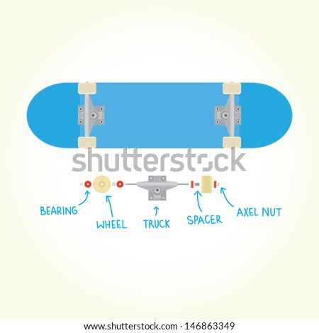 Blank skateboard and parts isolated vector - stock vector