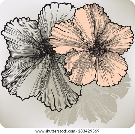 Blooming hibiscus flower, hand-drawing. Vector illustration. - stock vector