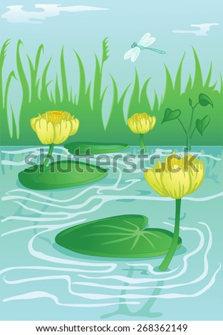 blooming yellow water-lilies in calm water flow - stock vector