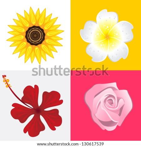 Blossom Flower - stock vector