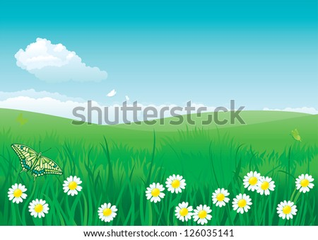 Blossom summer. Vector illustration of summer landscape with butterfly, many flowers on green grass and blue sky with fluffy clouds