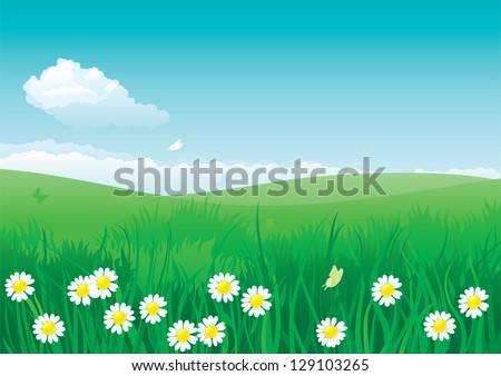 Blossom summer. Vector illustration of summer landscape with many flowers on green grass and blue sky with fluffy clouds