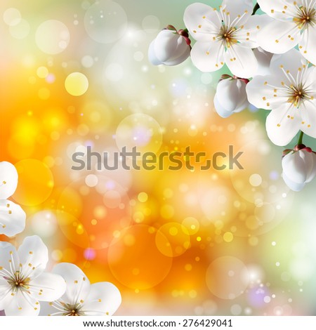 Blossoming tree branch with white flowers on bokeh yellow background