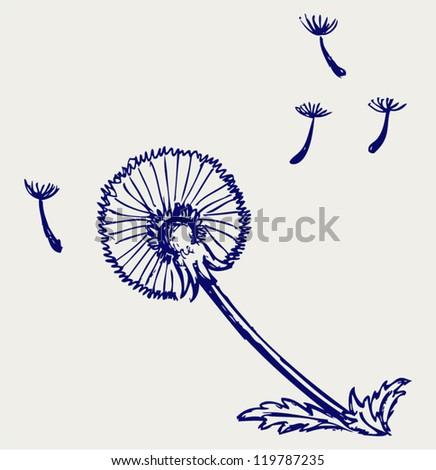 Blow Dandelion. Doodle style - stock vector