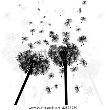 blows dandelions silhouette on white background illustration - stock vector